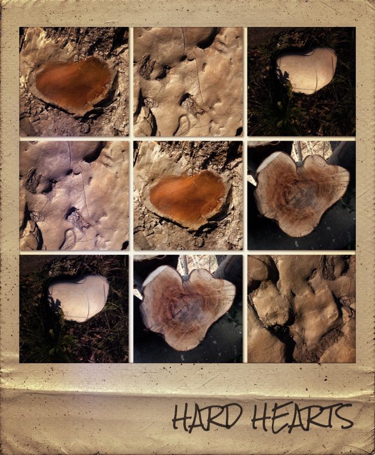 hard_hearts